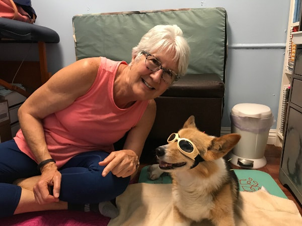 Luna receives acupuncture wearing her Doggles.
